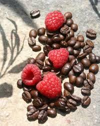 csokis málna